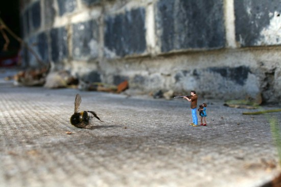 miniature, photography, bee