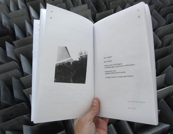 10 remaining copies of Concrete Sound are available for purchase from the authors. (Photo courtesy Audra Wolowiec)