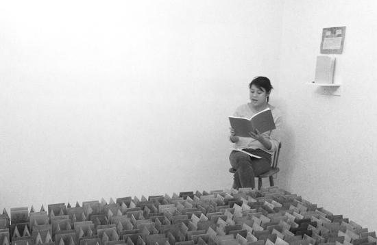Hou reading-Norte Maar