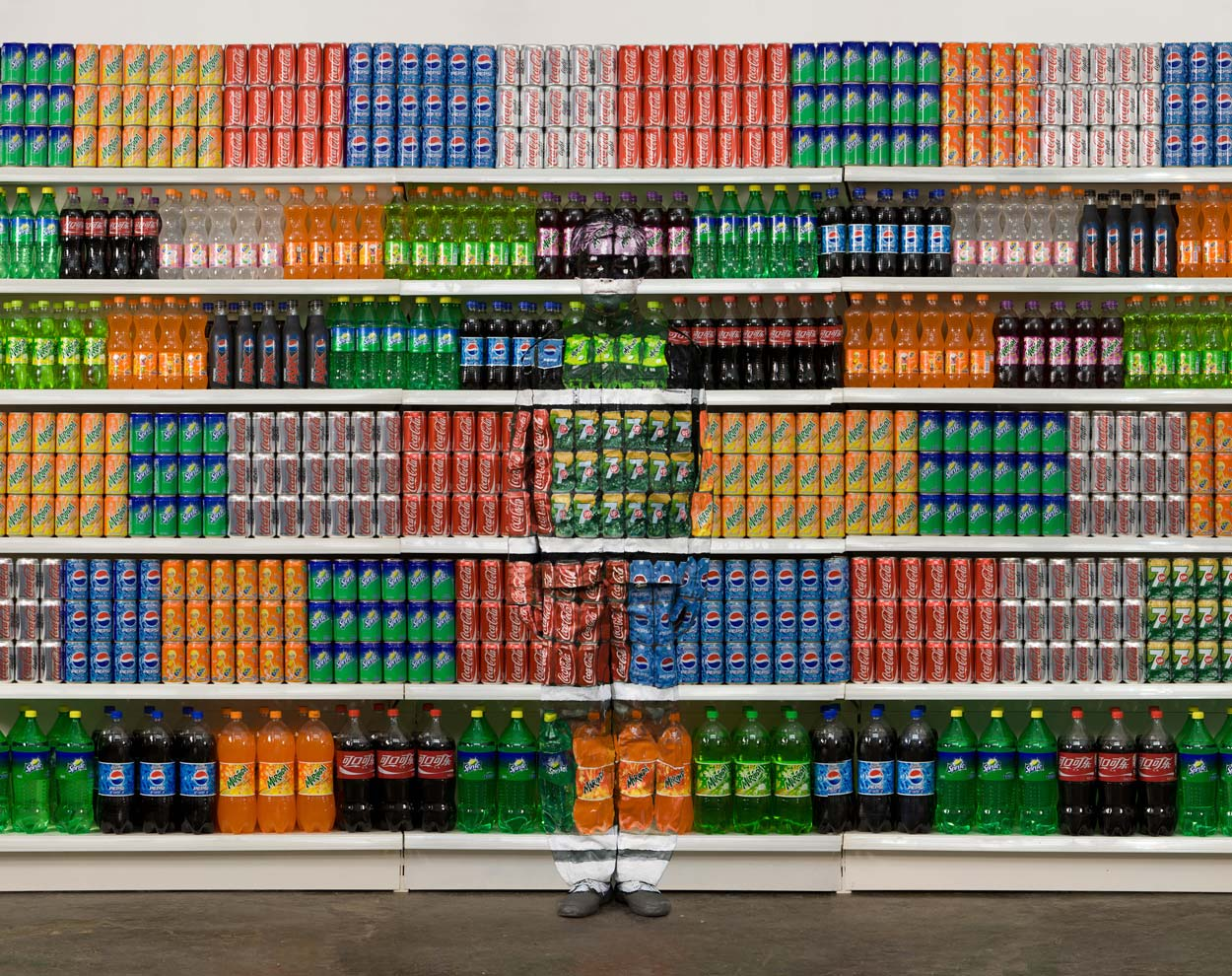 Liu Bolin, Hiding in the City No.93 -Supermarket No.2, 2010 (Photo Courtesy Eli Klein Fine Art  ©  Liu Bolin. Click to Enlarge)