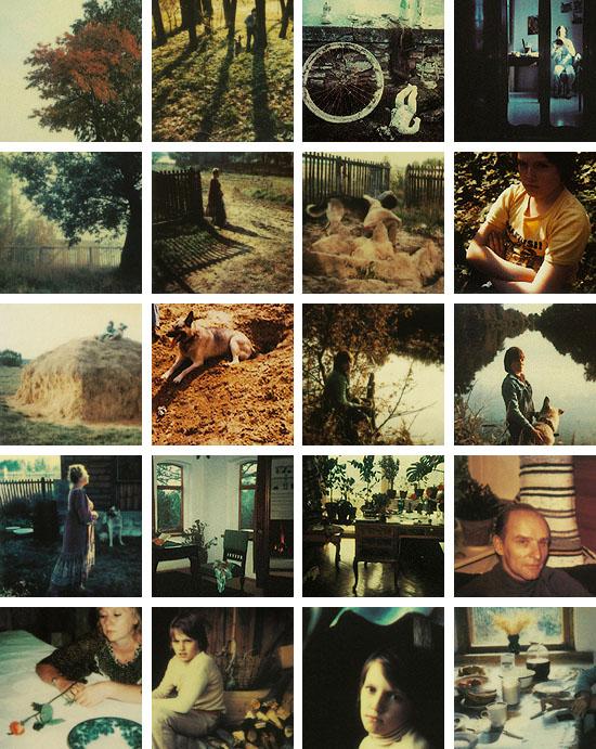 tarkovsky-Polaroid Mosaic-riowang