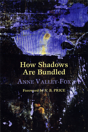 How the Shadows are Bundled-Anne Valley-Fox