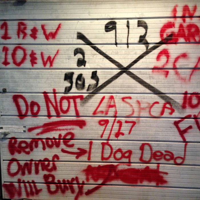 A garage door on view at the Louisiana State Museum shows the X system used by FEMA and other search and rescue groups during Hurricane Katrina. Xs are still visible on some houses throughout New Orleans (Photo by Michelle Aldredge)