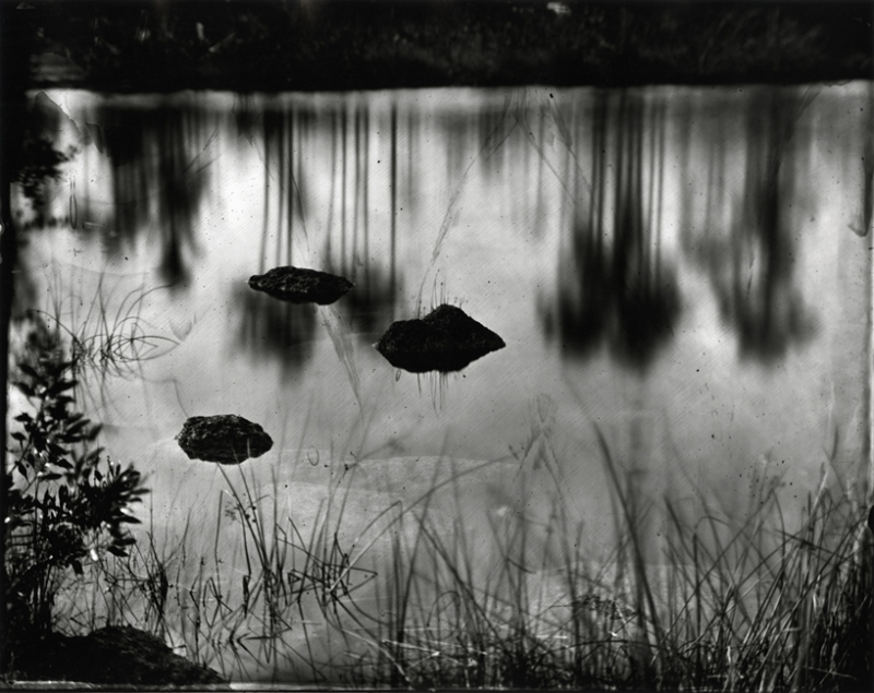 Lisa Elmaleh, Slash Pines Reflected in Pine Glades Lake, Everglades, Florida, 2010. (Photo C Lisa Elmaleh via lisaelmaleh.com)